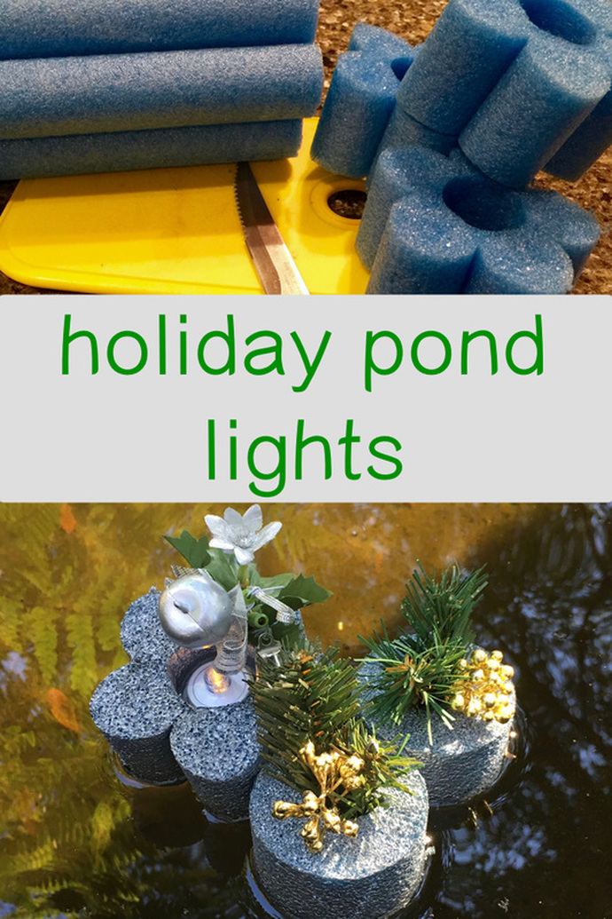Holiday Pond Light. MotherDaughterProjects.com