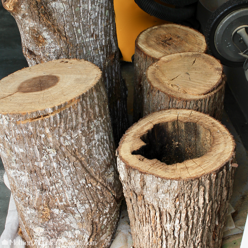Learn How To DIY A Tree Log And Upcycle It Into A Rustic Stump Side Table