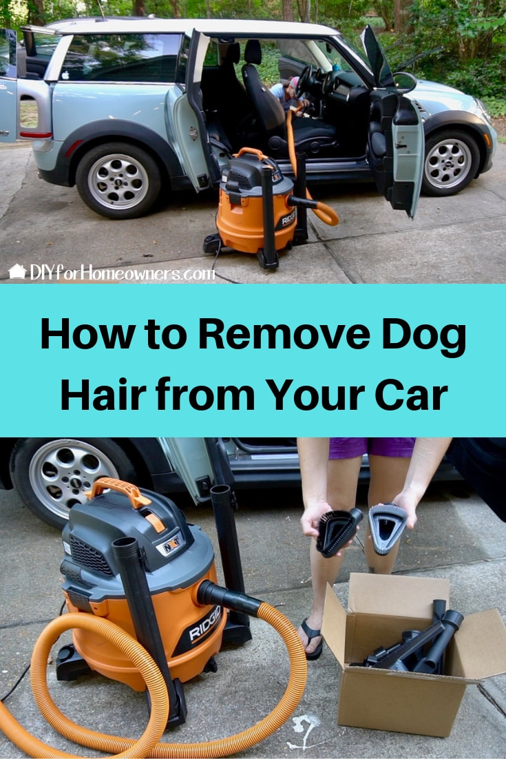 Pinterest pin how to remove dog hair from your car.
