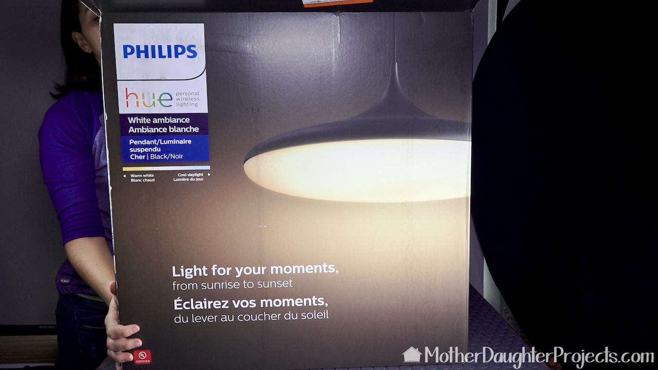 The Philips Hue pendant smart home light.
